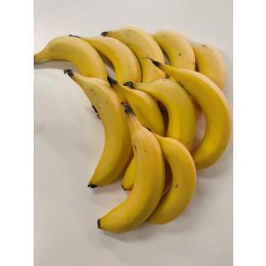 越後バナーナ 数量限定 家庭用 1kg お徳用 おうちでバナーナ  国産 新潟県産 期間限定 大小あり 傷・擦れあり|vegetable-fruit-igh