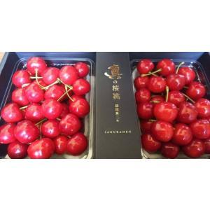 佐藤錦 山形県産 さくらんぼ 特秀 真の桜桃 バラ詰め 1kg 産地直送 お取り寄せ|vegetable-fruit-igh