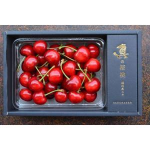 さくらんぼ 山形県産 佐藤錦 特秀 真の桜桃 バラ詰め 500g 産地直送 お取り寄せ|vegetable-fruit-igh