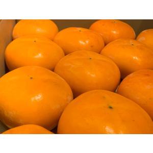 柿 種なしで濃厚な甘さ 新潟県佐渡産 おけさ柿 L 18個入れ(3.75kg詰)|vegetable-fruit-igh