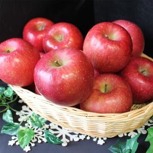 本物をあなたに。志賀高原産『サンふじりんご』約 2.5kg(6〜8個)長野県りんご/林檎/リンゴ|vegetable-fruit-igh