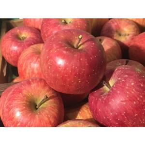 りんごの名産地と言えば長野県ですね。中でも志賀高原のりんごは超高級品。そんな志賀高原のすぐ近くにある...