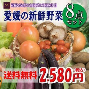 福袋 愛媛のお楽しみ野菜セット お試し版 8品 送料無料!!|vegetable-fruit-pro