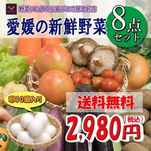 福袋 愛媛のお楽しみ野菜セット お試し版 8品 卵入り ♪ 送料無料!!|vegetable-fruit-pro