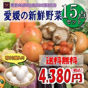 福袋 愛媛のお楽しみ野菜セット デラックス☆ 15品 卵入り ♪ 送料無料!!|vegetable-fruit-pro