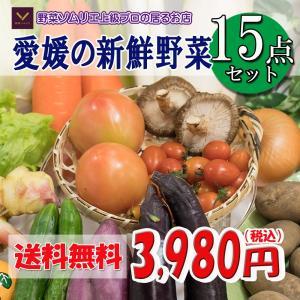 福袋 愛媛のお楽しみ野菜セット デラックス☆ 15品 ♪ 送料無料!!|vegetable-fruit-pro