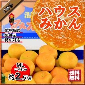 ハウスみかん お中元 贈答 ハウスミカン 温室みかん 愛媛県産 みかん 送料無料 約 2.5kg|vegetable-fruit-pro