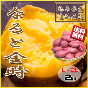 鳴門金時 徳島県産 なると金時 金時芋 さつまいも 2kg 新物 送料無料|vegetable-fruit-pro