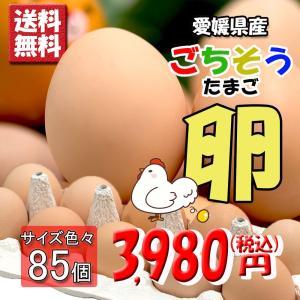 たまご 愛媛県 餌と生育にこだわった ごちそう卵 まとめ買い 80個 + 破損保障 5個 送料無料|vegetable-fruit-pro