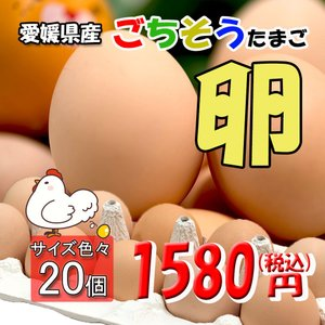 たまご 愛媛県 餌と生育にこだわった ごちそう卵 まとめ買い 20個 送料無料|vegetable-fruit-pro