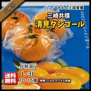 清見タンゴール 清見 贈答 お中元 三崎清見 きよみ L-3L 10個〜15個|vegetable-fruit-pro