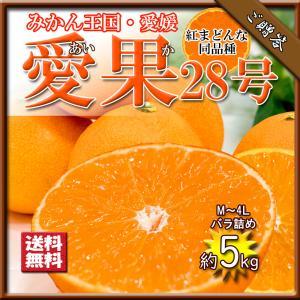 紅まどんな 愛果28号 贈答用 みかん べにまどんな 愛媛県産 L〜2L 12個 〜15個 3kg ...