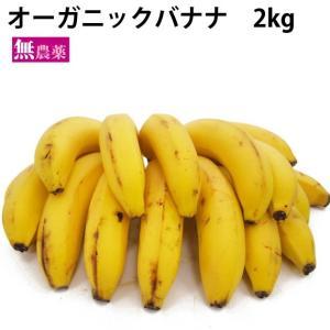 送料無料 有機 オーガニック バナナ 2kg 中南米産