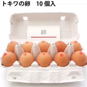 【トキワの卵20個】健康に育てられた鶏の卵20個(送料無料)