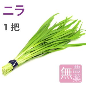 ポイント消化 食品 ニラ 1把 高知県産無農薬栽培 送料別