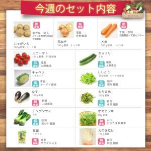 お買い得 野菜 野菜セット 無農薬 低農薬 13品目 こだわり野菜セット 送料無料 |vegetable-heart|02