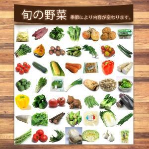 お買い得 野菜 野菜セット 無農薬 低農薬 13品目 こだわり野菜セット 送料無料 |vegetable-heart|04
