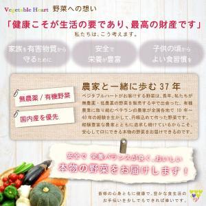 お買い得 野菜 野菜セット 無農薬 低農薬 13品目 こだわり野菜セット 送料無料 |vegetable-heart|06