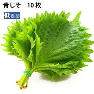 熊本県産 低農薬栽培 青じそ10枚  送料別 ポイント消化 食品