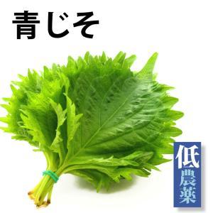 青じそ1パック 栃木県産無農薬栽培青じそ10枚  送料別 ポイント消化 食品
