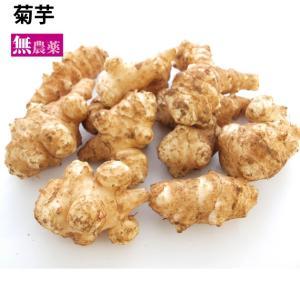 菊芋  無農薬栽培 2kg 送料無料