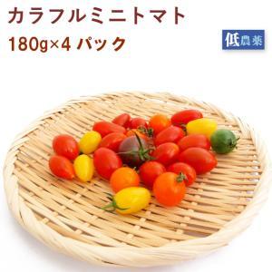 カラフルミニトマト 埼玉県産 低農薬栽培 4パック 送料無料 vegetable-heart