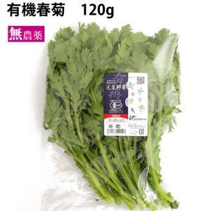 春菊 5把 茨城県産無農薬栽培  送料無料...