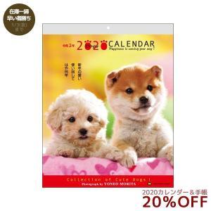 森田米雄 メッセージDOG カレンダー 2020 年 いぬ 壁掛け スケジュール 動物写真 書き込み|velkommen