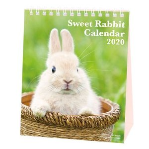 カレンダー 2020 年 Sweet Rabbit  卓上 うさぎ 動物写真 書き込み インテリア|velkommen