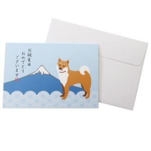 POP-UP メッセージカード グリーティングカード 柴犬 柴田さんの住む東京わさび町 Japanシリーズ バースデー 231 アクティブコーポレーション 封筒付き velkommen