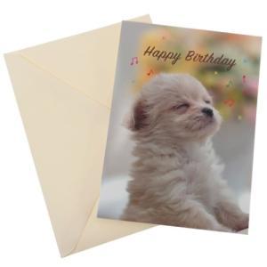 バースデーカ ード オルゴール付き グリーティングカード オルゴールアレンジ 犬 アニマル アクティブコーポレーション|velkommen