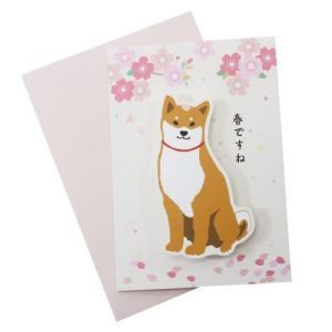 柴田さんの住む東京わさび町 グリーティングカード スプリング付き メッセージカード さくらシリーズ 225 柴犬 アクティブコーポレーション 封筒付き velkommen