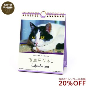 カレンダー2020年 低血圧なネコ 卓上 ポストカード仕様 APJ ねこ 150×190mm 動物 写真 velkommen