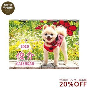 カレンダー 2020 年 俊介 ポメラニアン いぬ 壁掛け スケジュール APJ 364×257mm 動物 写真 書き込み|velkommen
