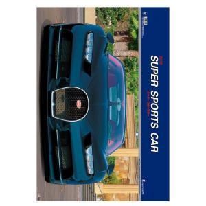 壁掛け 2019 カレンダー DX スーパースポーツカー 写真 趣味 車 フィルム フォト 大判 フォトカレンダー インテリア 504×742mm velkommen