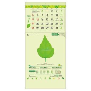 壁掛けカレンダー 2020 上から順タイプ  グリーン 3ヶ月 eco ビジネス オフィス スケジュール 実用 書き込み velkommen