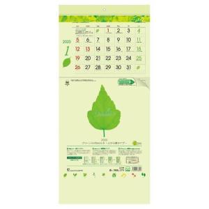 壁掛け カレンダー 2020 年 上から順タイプ グリーン3ヶ月eco S  シンプル オフィス 実用 書き込み velkommen