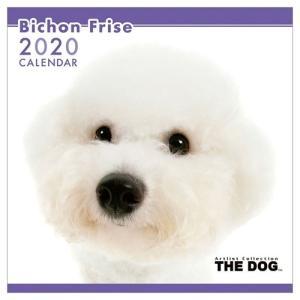 ビションフリーゼ 2020年 カレンダー 壁掛け THE DOG いぬ トライエックス 60×30cm 9月中旬発売予定 アニマル 写真|velkommen