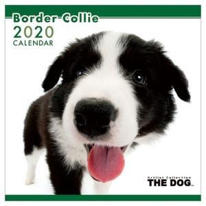 ボーダーコリー 令和2年暦 2020年 カレンダー 壁掛け THE DOG いぬ アニマル 写真 トライエックス|velkommen