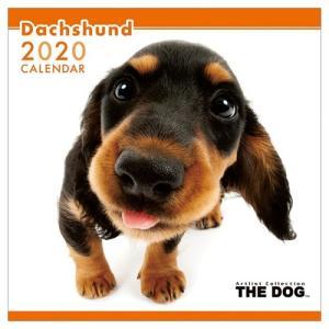 ダックスフンド 令和2年暦 2020年 カレンダー 壁掛け THE DOG いぬ アニマル 写真 トライエックス|velkommen