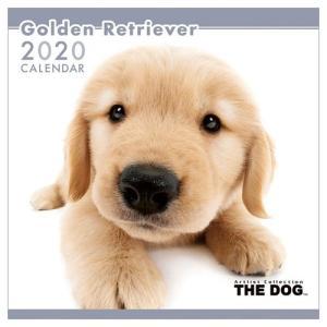 ゴールデンレトリーバー 壁掛け いぬ 2020年 カレンダー 令和2年暦 THE DOG トライエックス 60×30cm|velkommen