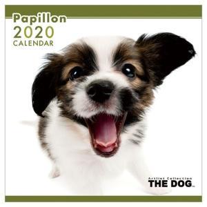 パピヨン いぬ 令和2年暦 2020年 カレンダー 壁掛け THE DOG トライエックス 60×30cm|velkommen