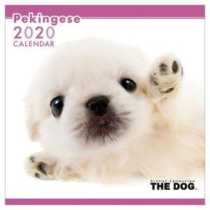 ペキニーズ 壁掛け 2020年 カレンダー THE DOG いぬ 令和2年暦 アニマル 写真|velkommen