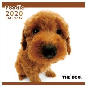 プードル 2020年 カレンダー 壁掛け THE DOG いぬ トライエックス 60×30cm 9月中旬発売予定|velkommen