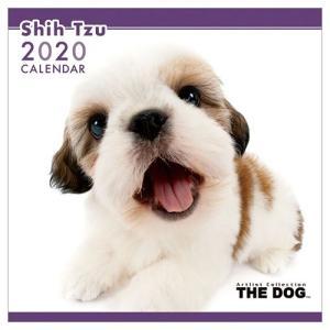 2020年 カレンダー シーズー 壁掛け いぬ THE DOG 60×30cm 9月中旬発売予定 アニマル 写真|velkommen