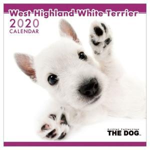 ウエストハイランドホワイトテリア 2020年 カレンダー アニマル 写真 令和2年暦 壁掛け THE DOG いぬ トライエックス|velkommen
