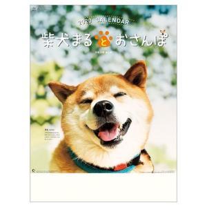 2020年 カレンダー 柴犬まるとおさんぽ 壁掛け いぬ 54×38cm 9月中旬発売予定 アニマル 写真|velkommen