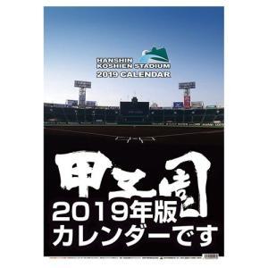 甲子園球場 プロ野球 令和2年暦 2020年 カレンダー 壁掛け トライエックス A2サイズ|velkommen