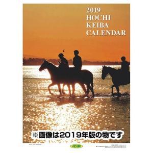 壁掛け 報知競馬 2020年 カレンダー 競馬騎手 令和2年暦 スポーツ A2サイズ 12月上旬発売予定|velkommen