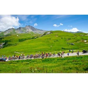 田中苑子 パネル「Col de la Madeleine」 297x420mm【自転車】 ※レターパック対象外|velove